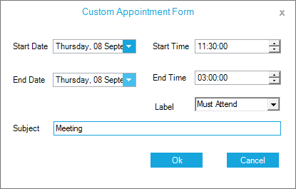 Show the custom appointment form