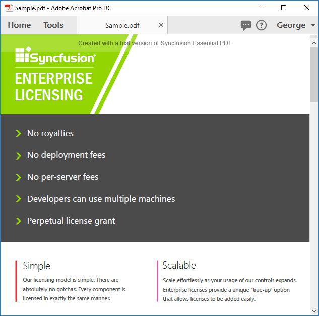 Screenshot of PDF document