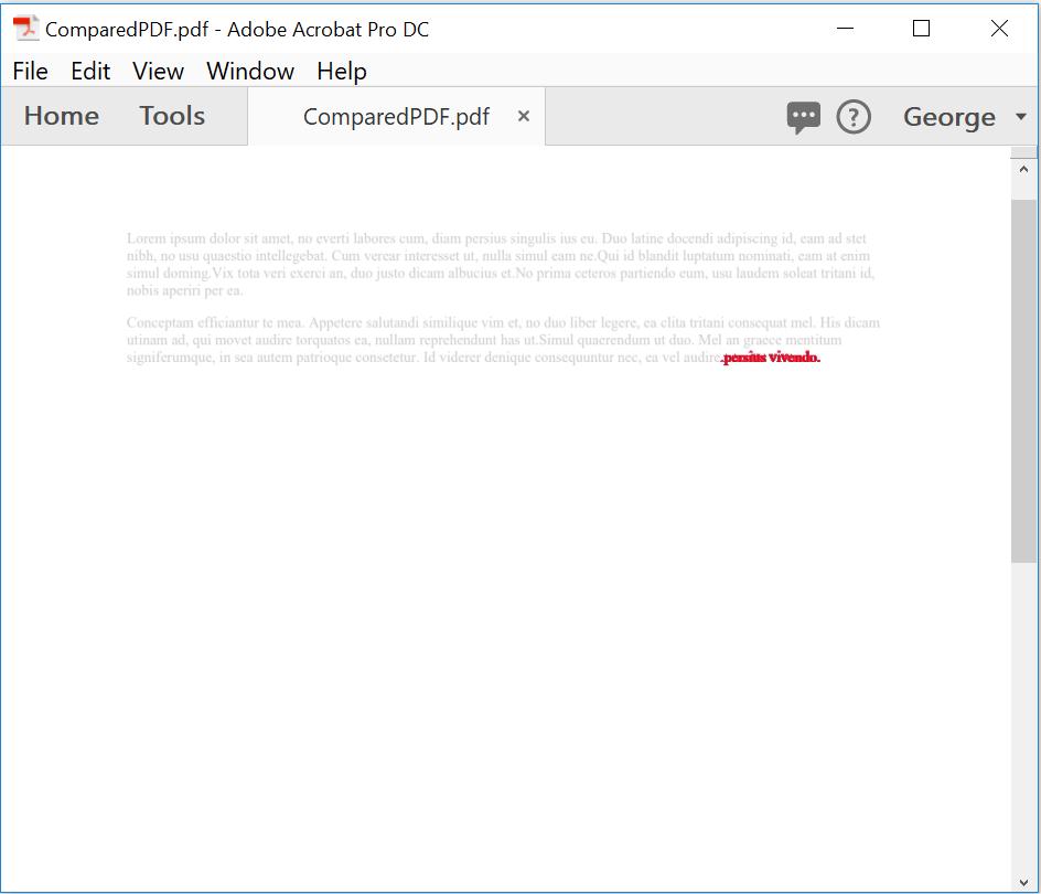 Screenshot of output PDF document