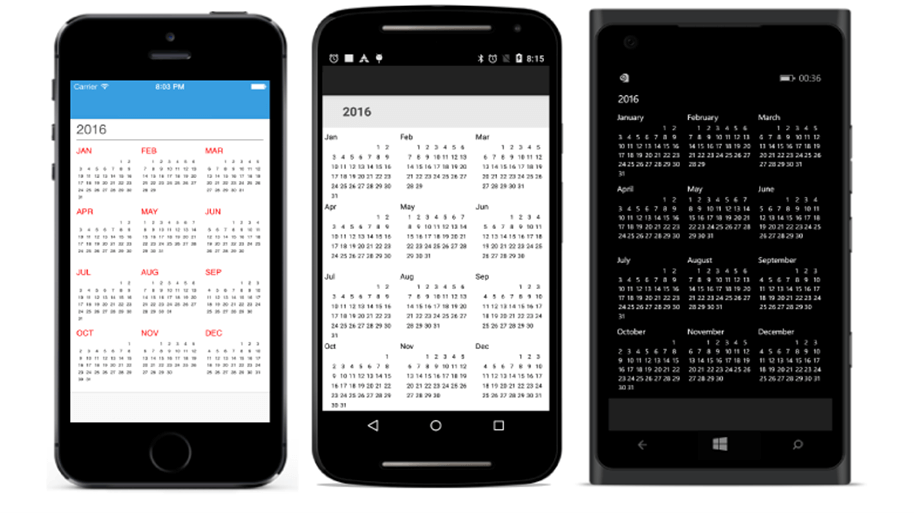 Year view of Calendar Xamarin