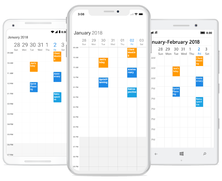 Week view in scheduler