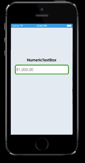 SfNumericTextBox Custom Border in iOS