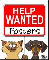FOSTERS NEEDED!!