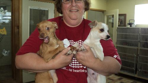 Richie and Chi Chi RICHIE ADOPTED!!
