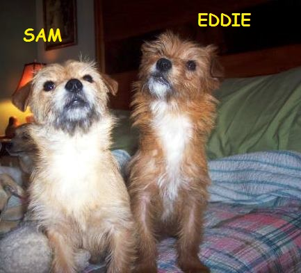 Eddie and Sam