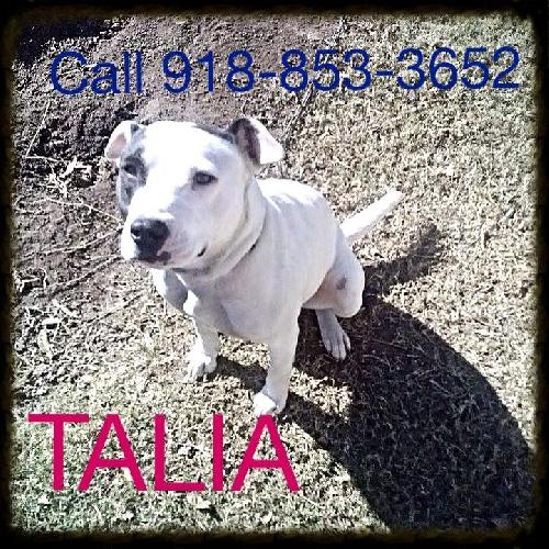 Talia/COURTESY LISTING 918-853-3652
