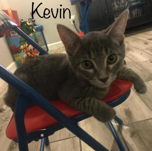 Photo of Kevin