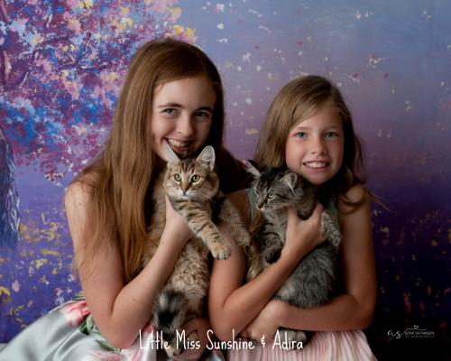Photo of Little Miss Sunshine And Adira - Bonded Pair