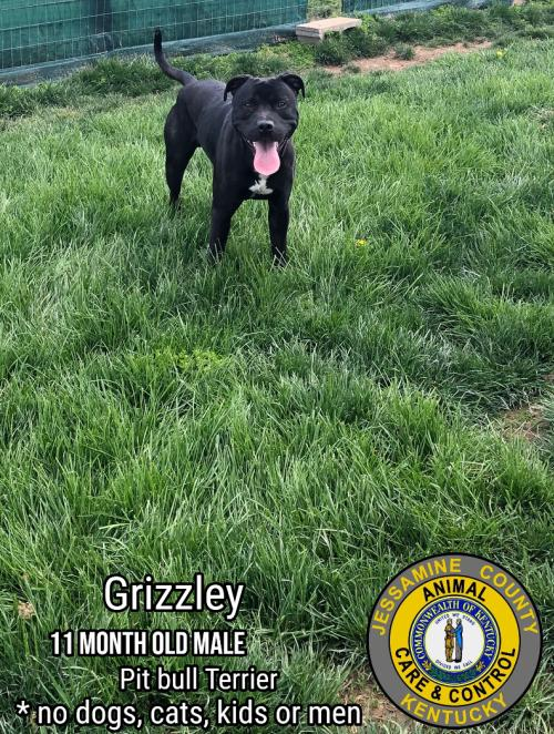 Grizzley