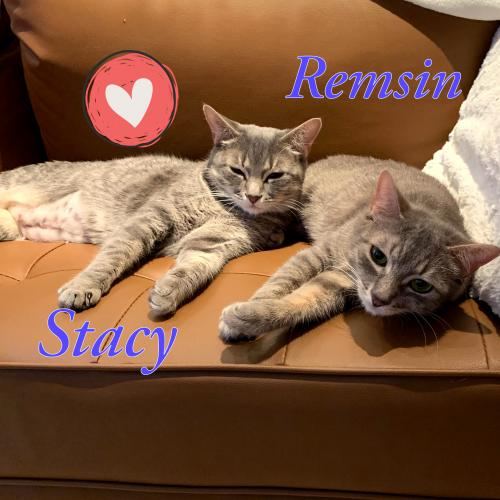 Stacy and Remsin