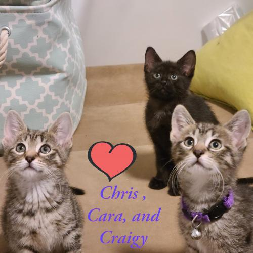 Craigy, Cara , and Christopher!