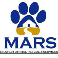 * Large Dog Fosters Needed