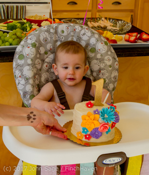 1008_Olivias_First_Birthday_Party_040916