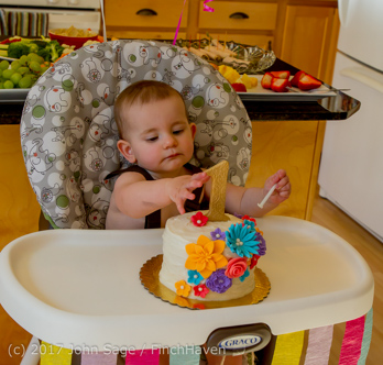 1016_Olivias_First_Birthday_Party_040916