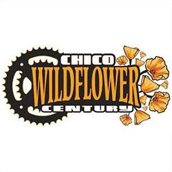 Chico Wildflower Century