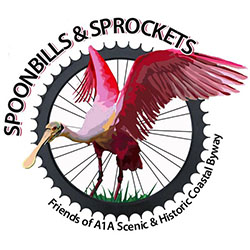Spoonbills and Sprockets Cycling Tour