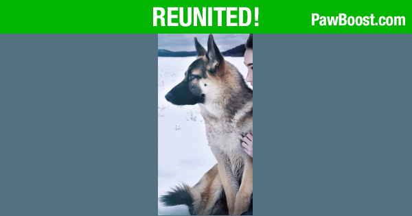 Reunited Male  last seen 83rd avenue and Northern, Glendale, AZ 85303