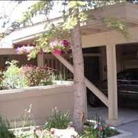 Luxury Condo For Sale In Incline Village Call Alvin Steinberg 1-800-666-4718