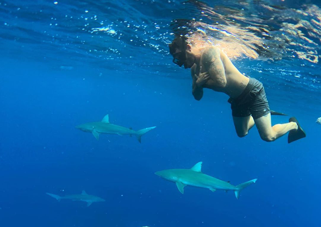 My best Molly Shannon impersonation while swimming with sharks- Calvin Corzine Yoga