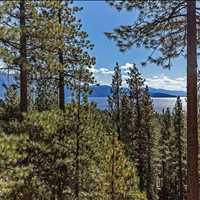 695 Tyner Way , Incline Village, NV 89451 Call Alvin Steinberg at 1-800-666-4718