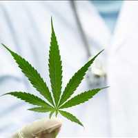 Fast Iowa Medical Cannabis Card Dr Mary Clifton 917-297-7439