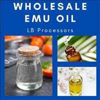 Best Wholesale Bulk Emu Oil For Sale Online LB Processors 615-746-8485