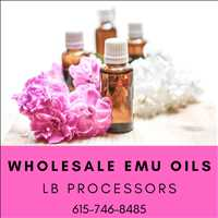 Order Bulk Emu Oil Wholesale from LB Processors 615-746-8485