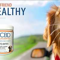 CBD Dog Treats Whole Hemp Phyto-Bites From CBD Unlimited Call 480-999-0097 Today