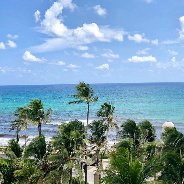 Palm Beach Views!