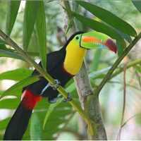 Adventure Touring in Costa Rica