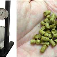 Typical SPR for hops and hop pellets frequently used for brewing