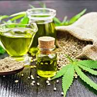 Professional Industrial Hemp Drying Facility Tennessee LB Processors 615-746-8485