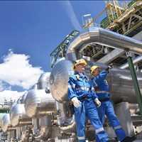 Best Wholesale Bulk Emu Oil LB Processors 615-746-8485