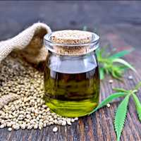 LB Processors Offers The Best CBD Hemp Extraction Services in Tennessee 615-746-8485