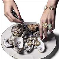 World's your oyster, get on top of it - Hip Hop Bling
