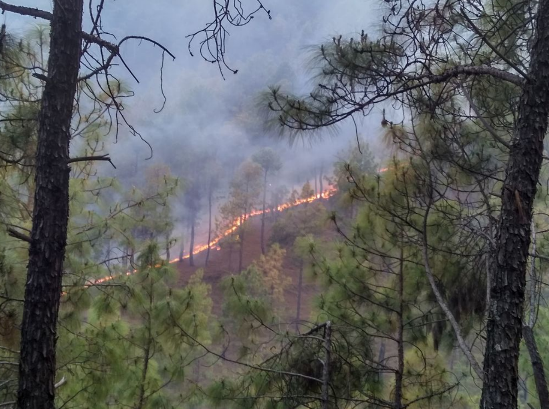 Wildfire In Southern Georgia city Folkston Georgia
