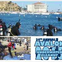34th Annual Avalon Underwater Cleanup 2015
