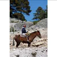 Motorcycle Tour Copper Canyon Mexico