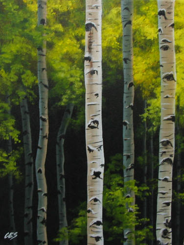 """Birch Forest"" original fine art by ~ces~ Christine E. S. Code"
