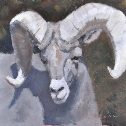 """""""Big Horn"""" original fine art by Susan Matteson"""