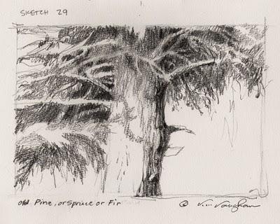"""Pine or Spruce or Fir"" original fine art by V.... Vaughan"