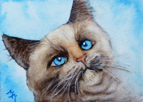 """""""Cat Portrait"""" original fine art by Monique Morin Matson"""