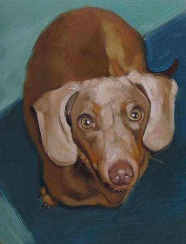 """Duncan the Dachshund a dog portrait"" original fine art by Diane Hoeptner"