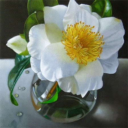 """Camellia 6x6"" original fine art by M Collier"