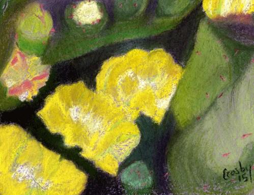 """Cactus Flowers"" original fine art by Donna Crosby"