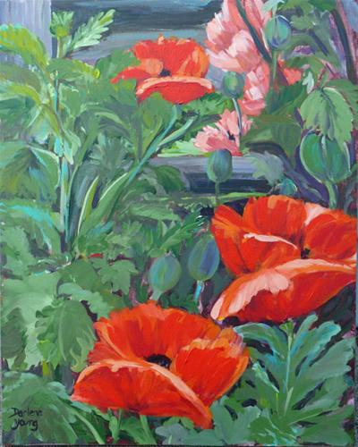 """James Bay Poppies"" original fine art by Darlene Young"