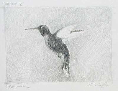 """Sketch 8___ Hummmm"" original fine art by V.... Vaughan"
