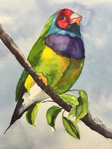 """Lady Gouldian Finch II, 8 x 10 watercolor, Wildlife"" original fine art by Donna Pierce-Clark"