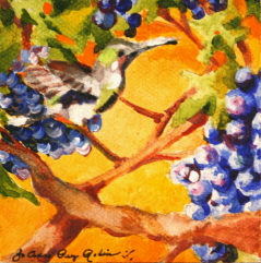 """""""Hummer and Grapes"""" original fine art by JoAnne Perez Robinson"""