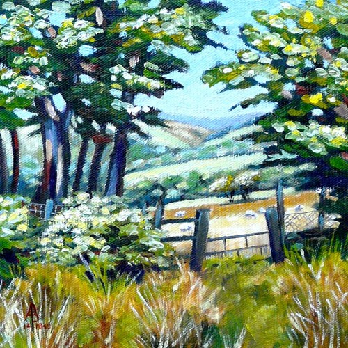 """Sheep beyond the gate"" original fine art by Alix Baker PCAFAS AUA"